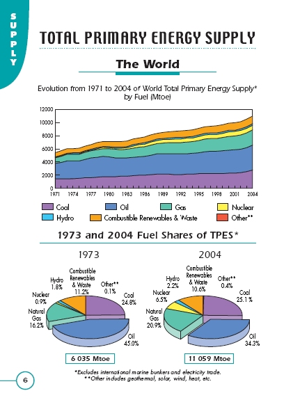 Key World Energy Statistics 1973 - 2004